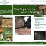 Web Micofora 2012